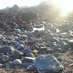 We hit Crescent City and took 9th street until we hit this wonderful rocky beach with tide pools.